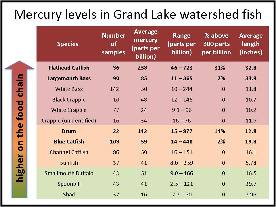 study result table: Mercury in fish
